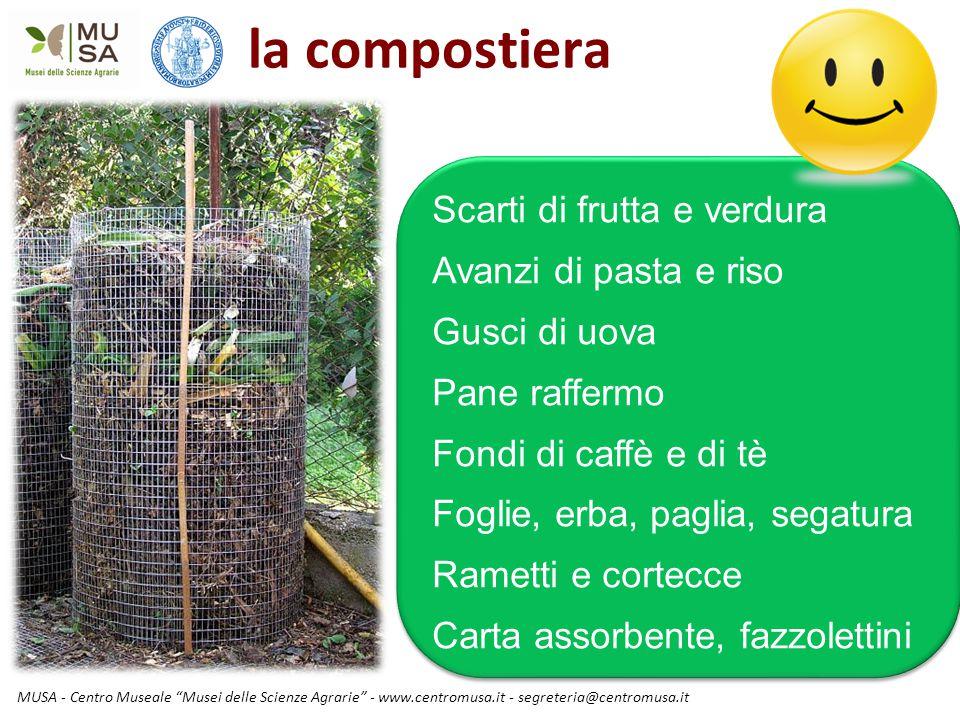 """MUSA - Centro Museale """"Musei delle Scienze Agrarie"""" - www.centromusa.it - segreteria@centromusa.it la compostiera Scarti di frutta e verdura Avanzi di"""