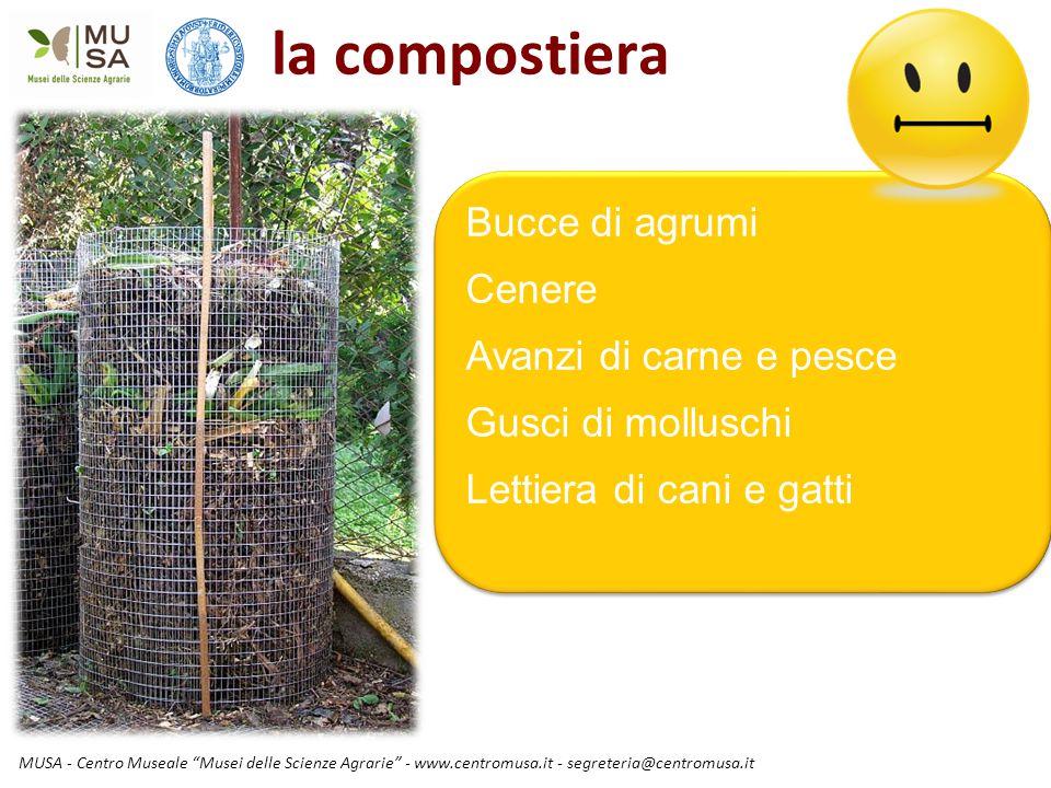 """MUSA - Centro Museale """"Musei delle Scienze Agrarie"""" - www.centromusa.it - segreteria@centromusa.it la compostiera Bucce di agrumi Cenere Avanzi di car"""