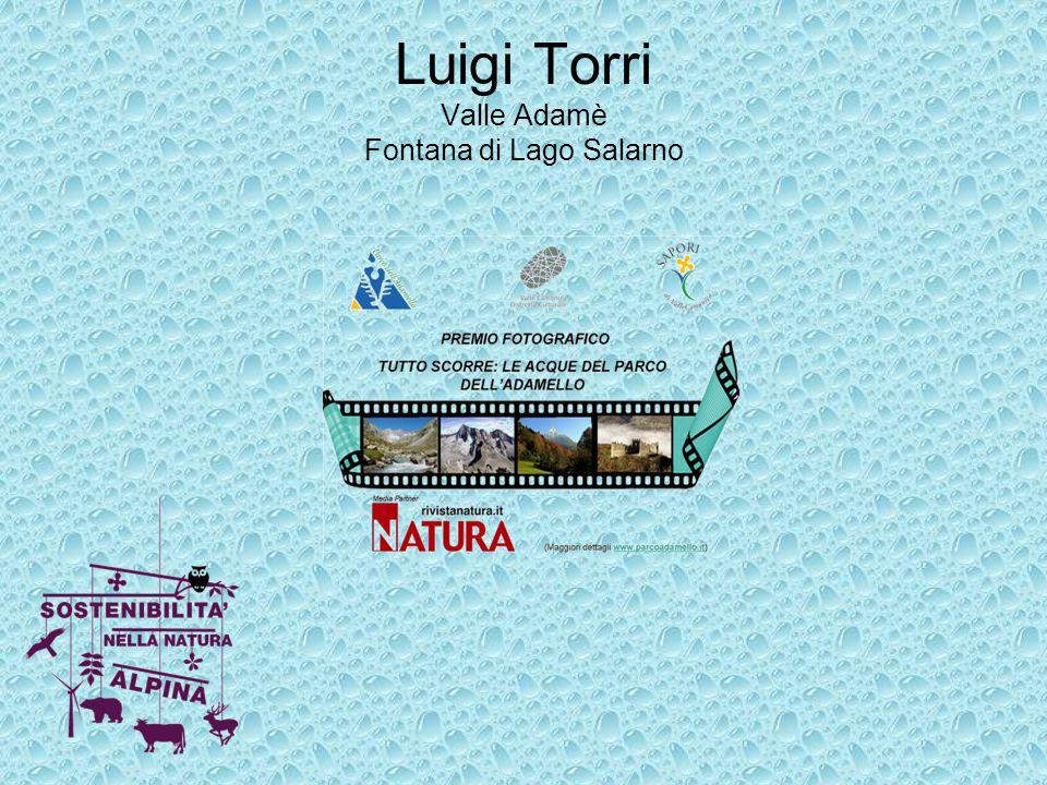 Luigi Torri Valle Adamè Fontana di Lago Salarno