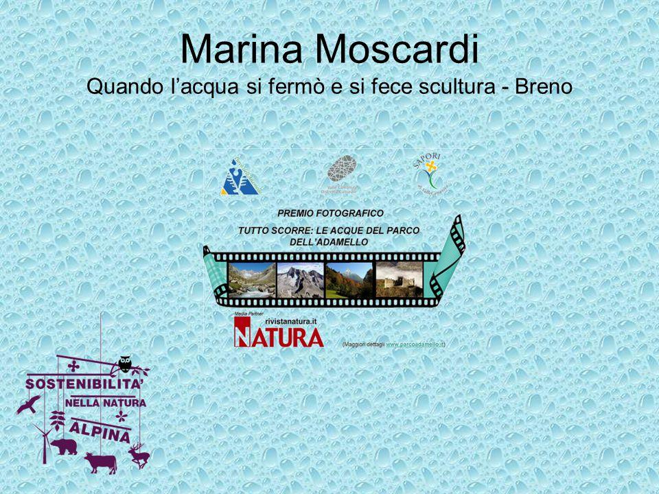 Marina Moscardi Quando l'acqua si fermò e si fece scultura - Breno
