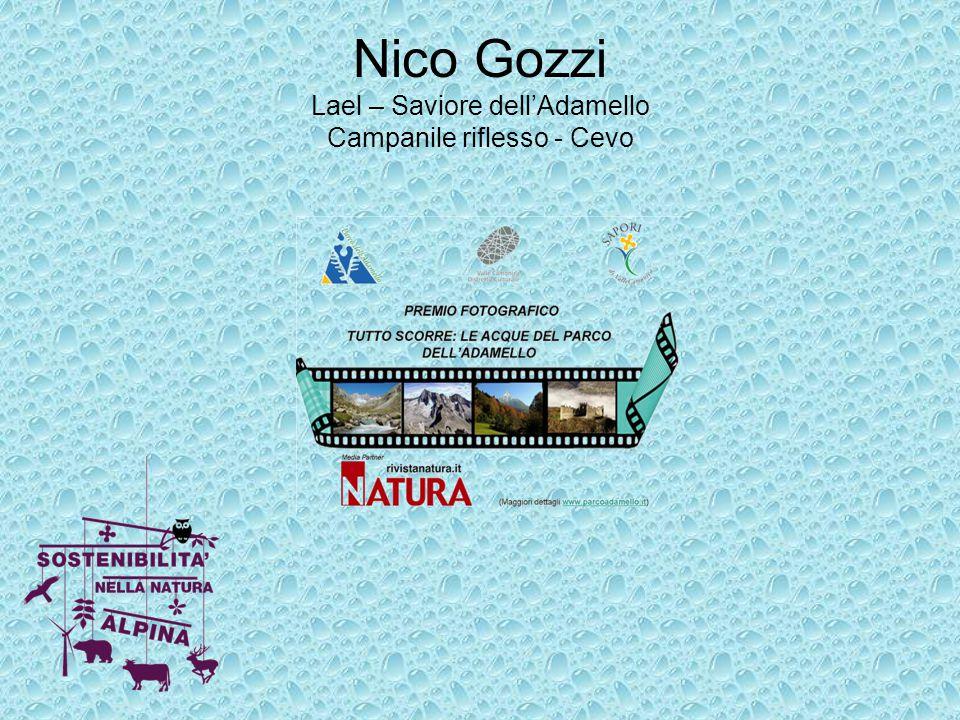 Nico Gozzi Lael – Saviore dell'Adamello Campanile riflesso - Cevo