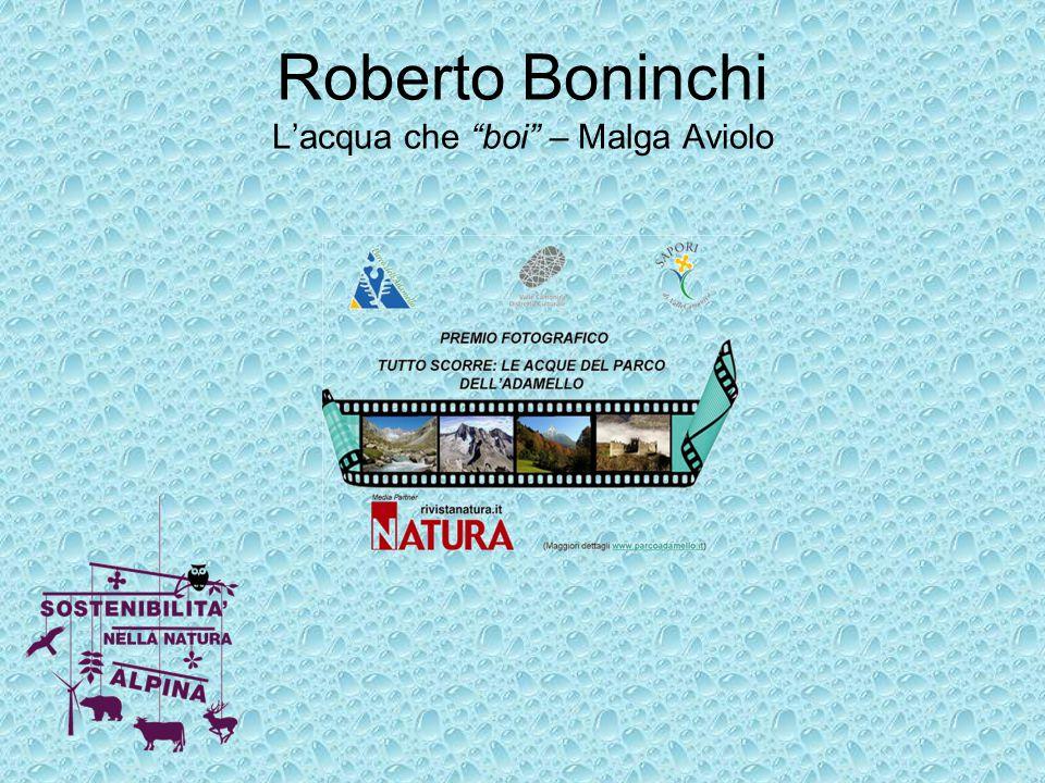 """Roberto Boninchi L'acqua che """"boi"""" – Malga Aviolo"""