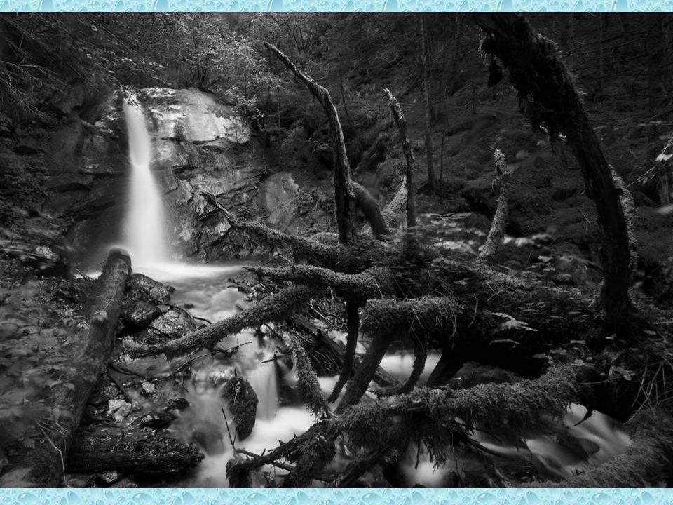 3° Classificato RINO FERRI Mordi e fuggi – Valle Adamè