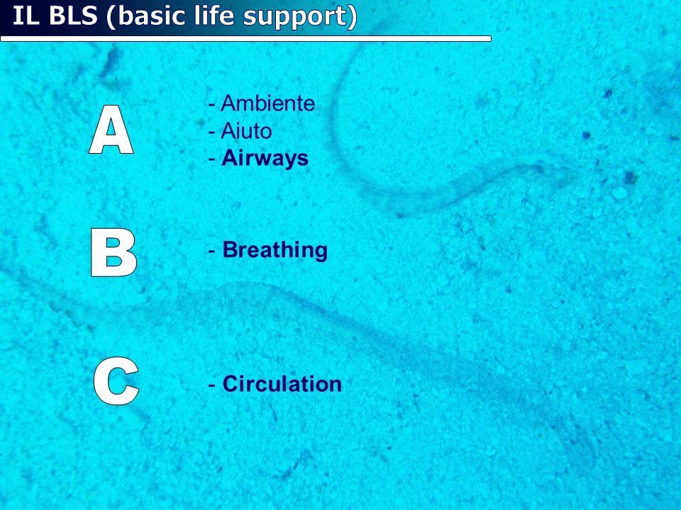 - Ambiente - Aiuto - Airways - Breathing - Circulation