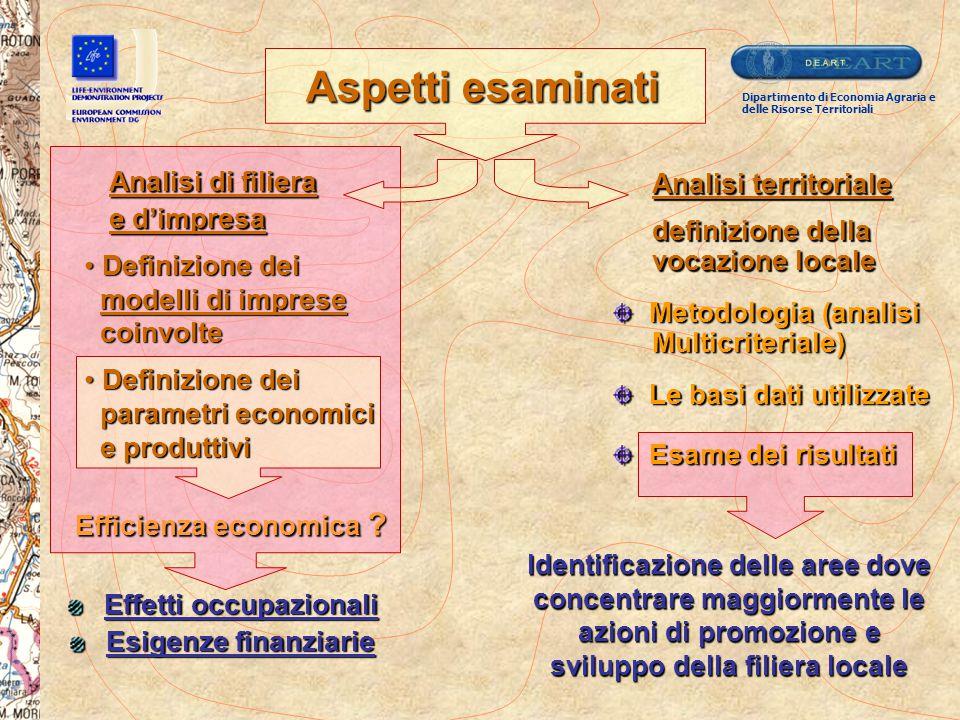 Effetti occupazionali Esigenze finanziarie Efficienza economica ? Definizione dei Definizione dei modelli di imprese modelli di imprese coinvolte coin