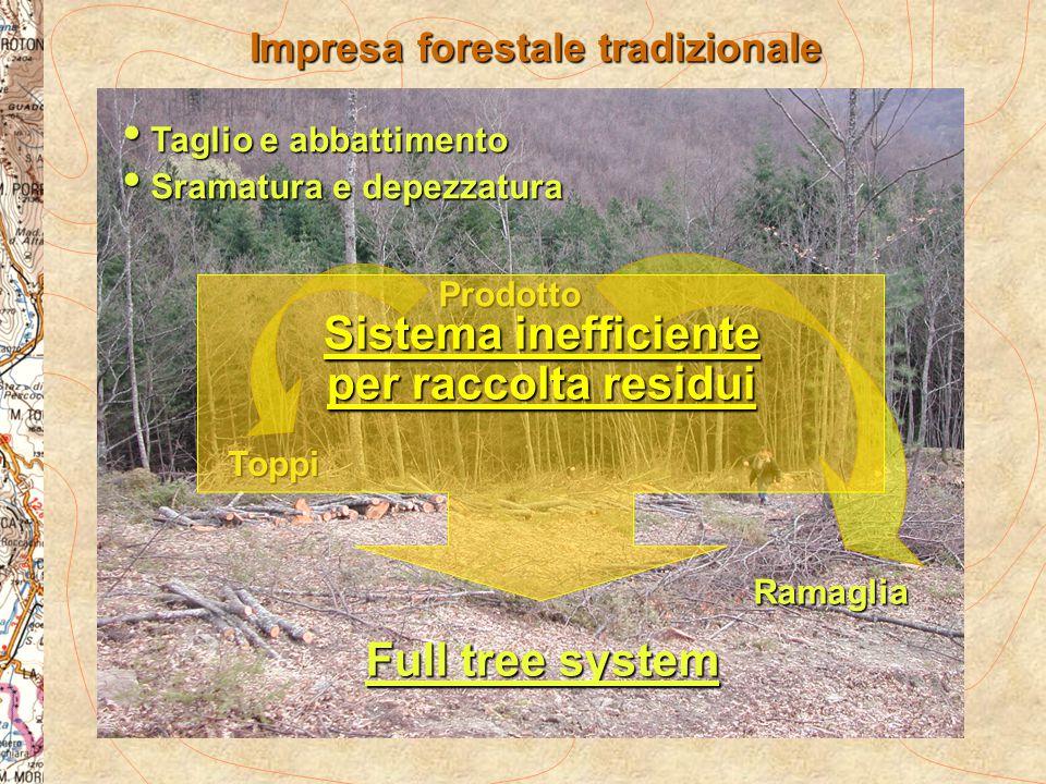 Prodotto Toppi Ramaglia Impresa forestale tradizionale Taglio e abbattimento Taglio e abbattimento Sramatura e depezzatura Sramatura e depezzatura Ful