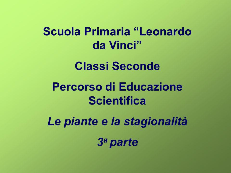 """Scuola Primaria """"Leonardo da Vinci"""" Classi Seconde Percorso di Educazione Scientifica Le piante e la stagionalità 3 a parte"""