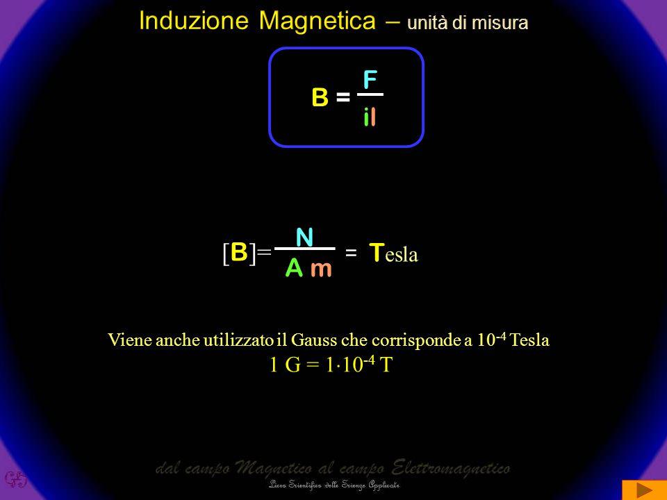F = B  i  l  sin(  ) La legge Ci dice che per la determinazione della forza F BISOGNA CONSIDERARE la componente di B perpendicolare al flusso della corrente : F = B  i l