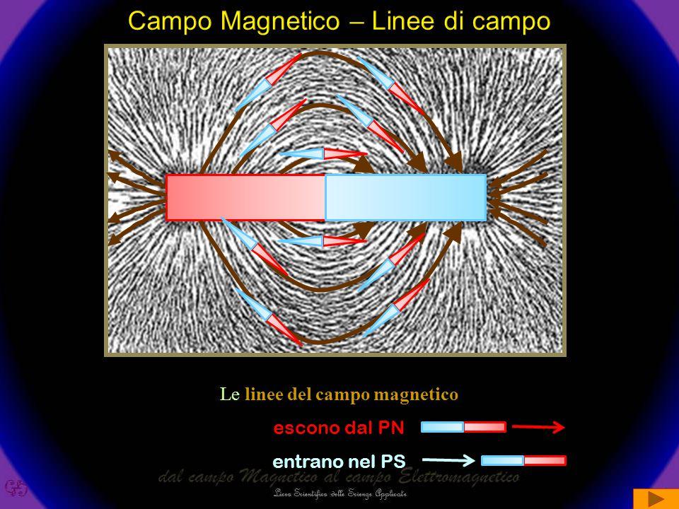 Le linee del campo magnetico escono dal PN entrano nel PS