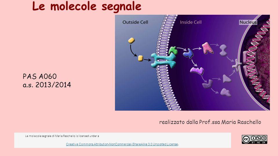 Le molecole segnale realizzato dalla Prof.ssa Maria Raschello PAS A060 a.s. 2013/2014 Le molecole segnale di Maria Raschello is licensed under a Creat