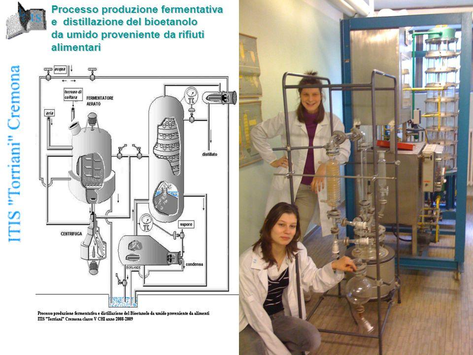 Processo produzione fermentativa e distillazione del bioetanolo da umido proveniente da rifiuti alimentari