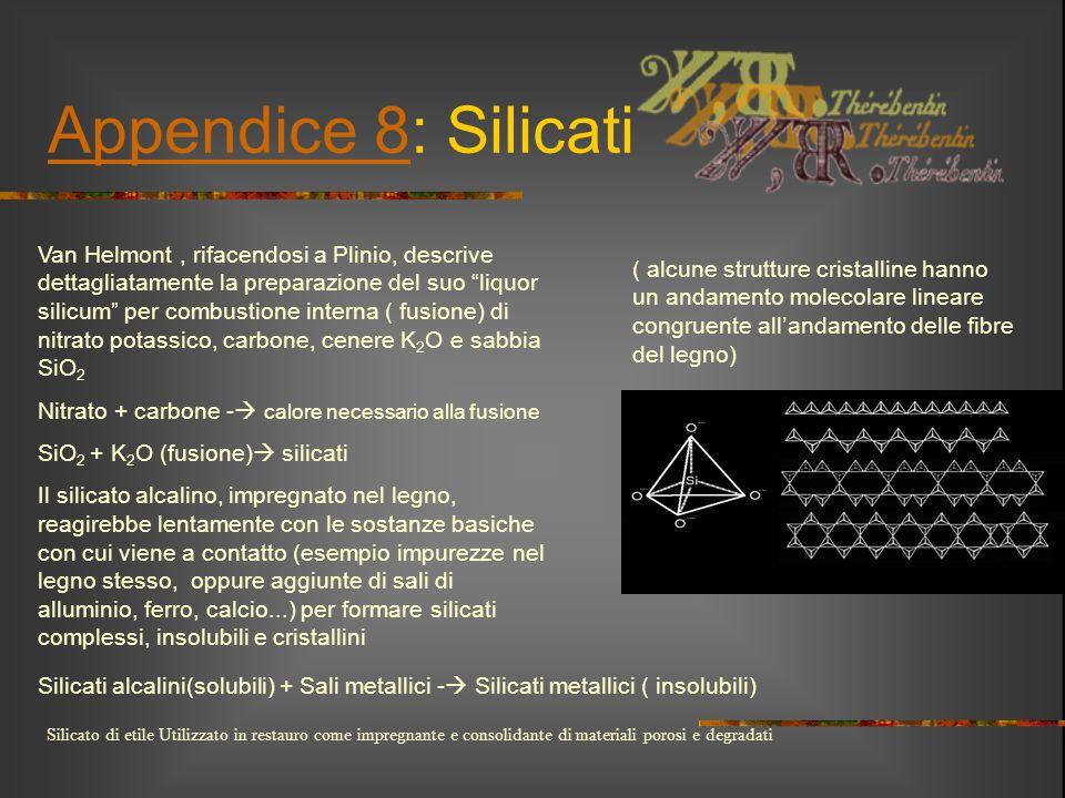"""Appendice 8Appendice 8: Silicati Van Helmont, rifacendosi a Plinio, descrive dettagliatamente la preparazione del suo """"liquor silicum"""" per combustione"""