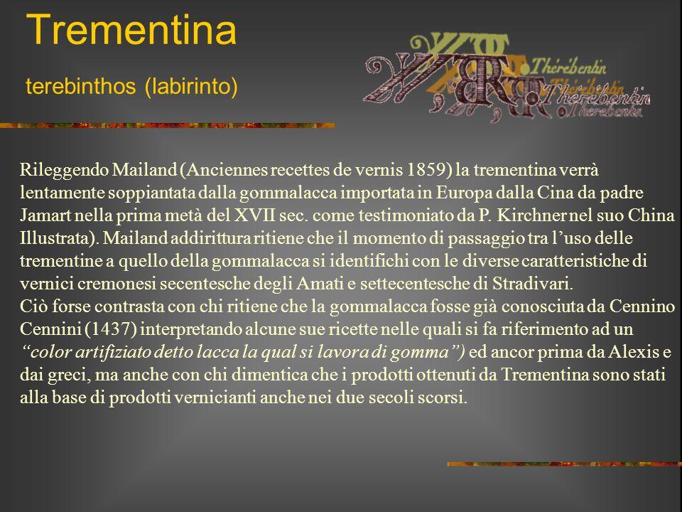 Trementina terebinthos (labirinto) Rileggendo Mailand (Anciennes recettes de vernis 1859) la trementina verrà lentamente soppiantata dalla gommalacca