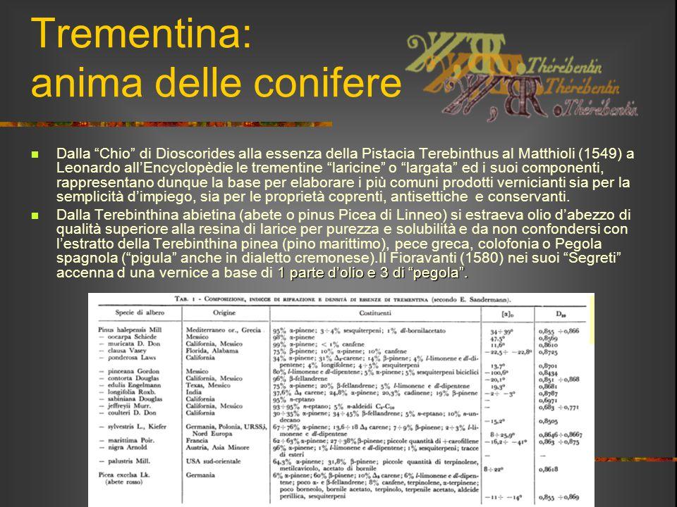 """Trementina: anima delle conifere Dalla """"Chio"""" di Dioscorides alla essenza della Pistacia Terebinthus al Matthioli (1549) a Leonardo all'Encyclopèdie l"""
