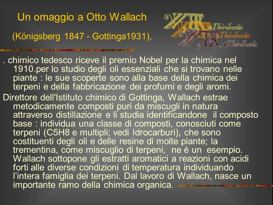 Un omaggio a Otto Wallach (Königsberg 1847 - Gottinga1931),. chimico tedesco riceve il premio Nobel per la chimica nel 1910.per lo studio degli oli es