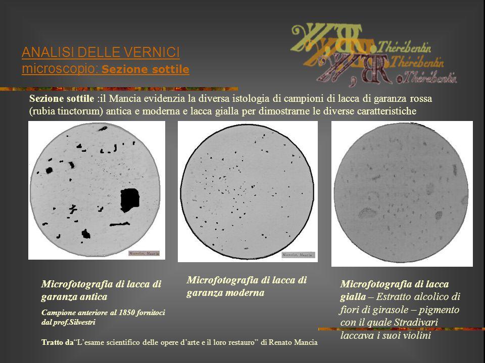 ANALISI DELLE VERNICI microscopio: Sezione sottile Sezione sottile :il Mancia evidenzia la diversa istologia di campioni di lacca di garanza rossa (ru