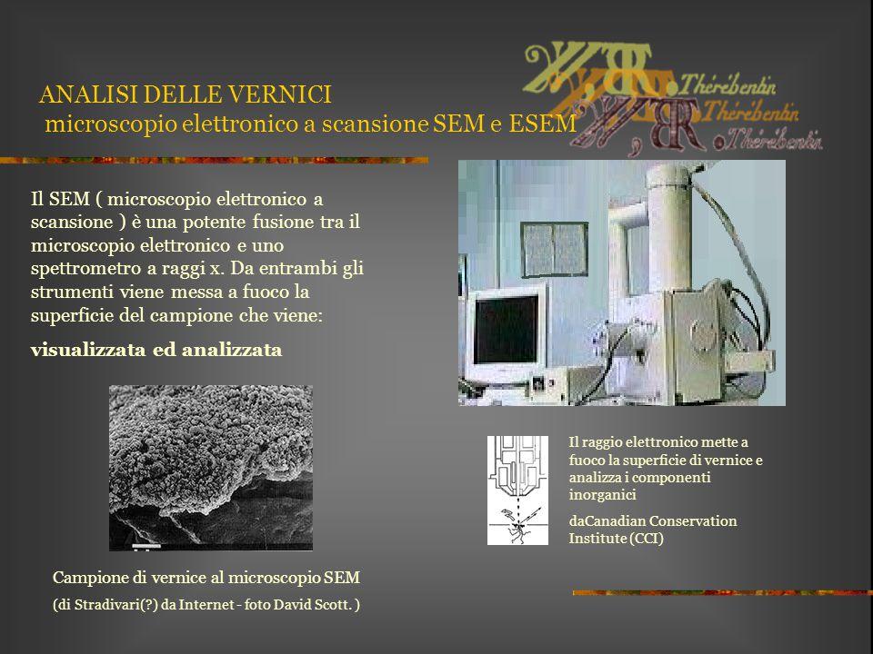 ANALISI DELLE VERNICI microscopio elettronico a scansione SEM e ESEM Il SEM ( microscopio elettronico a scansione ) è una potente fusione tra il micro