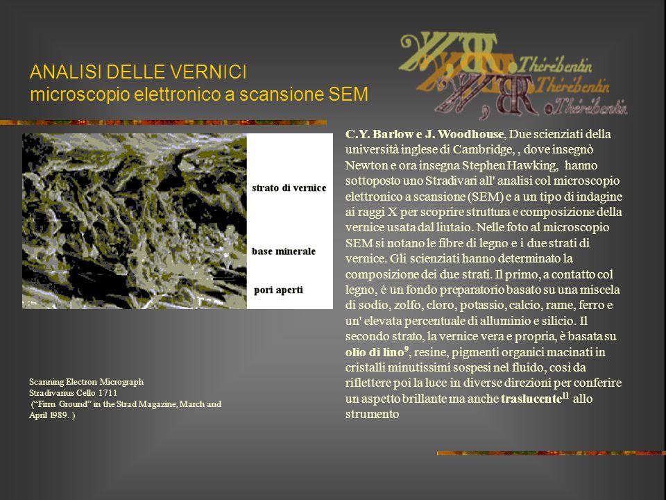 ANALISI DELLE VERNICI microscopio elettronico a scansione SEM C.Y. Barlow e J. Woodhouse, Due scienziati della università inglese di Cambridge,, dove