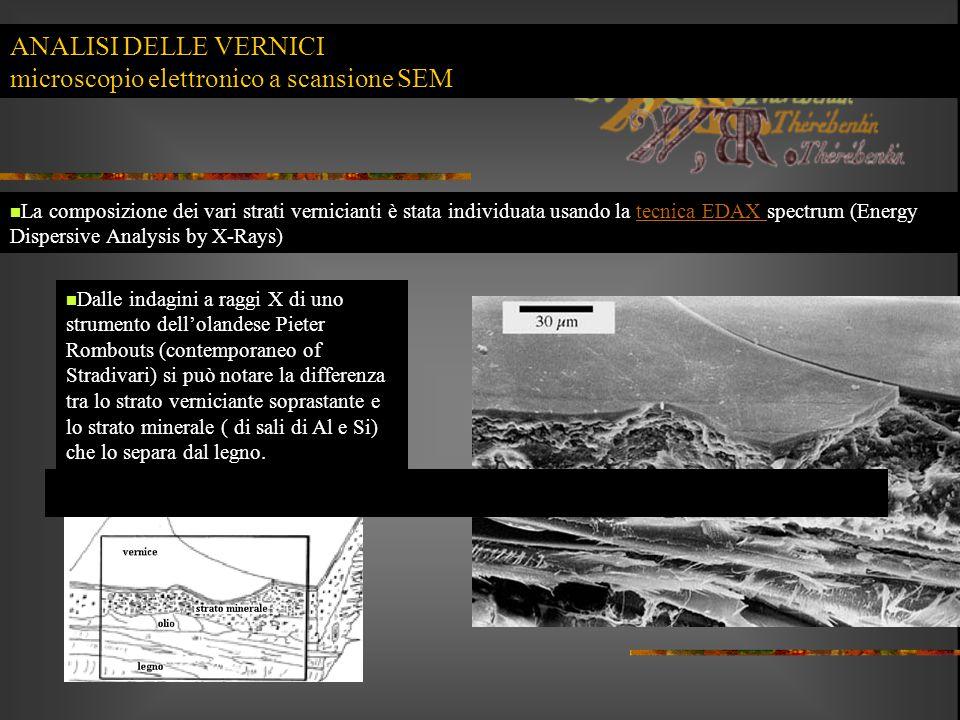 ANALISI DELLE VERNICI microscopio elettronico a scansione SEM La composizione dei vari strati vernicianti è stata individuata usando la tecnica EDAX s
