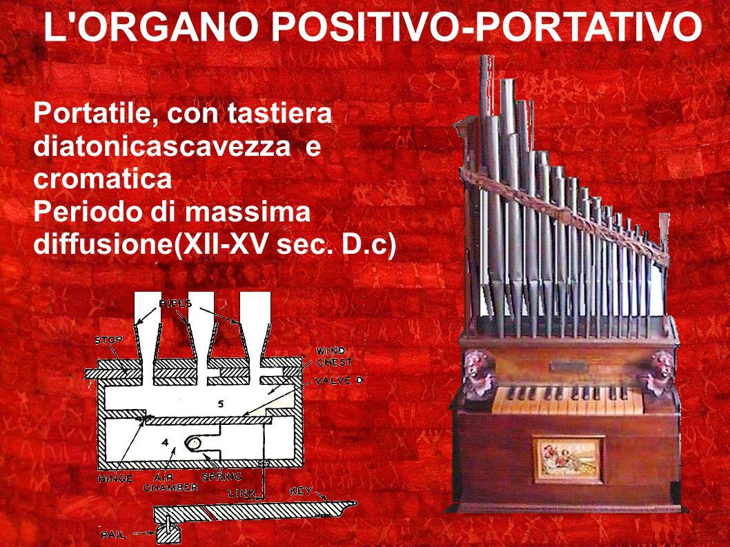 L'ORGANO POSITIVO-PORTATIVO Portatile, con tastiera diatonicascavezza e cromatica Periodo di massima diffusione(XII-XV sec. D.c)