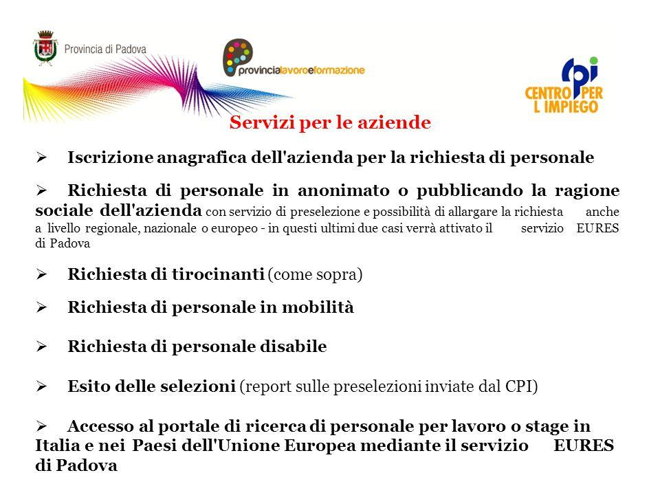 L'APPLICATIVO WEB SERVICE E I SERVIZI ON LINE