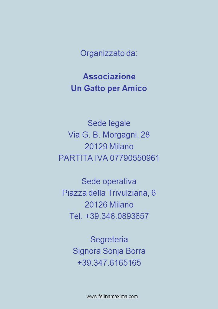 Organizzato da: Associazione Un Gatto per Amico Sede legale Via G. B. Morgagni, 28 20129 Milano PARTITA IVA 07790550961 Sede operativa Piazza della Tr