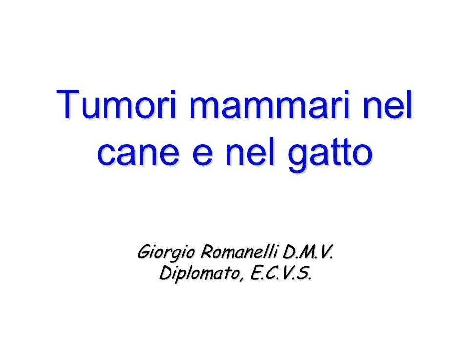 Giorgio Romanelli D.M.V. Diplomato, E.C.V.S. Tumori mammari nel cane e nel gatto