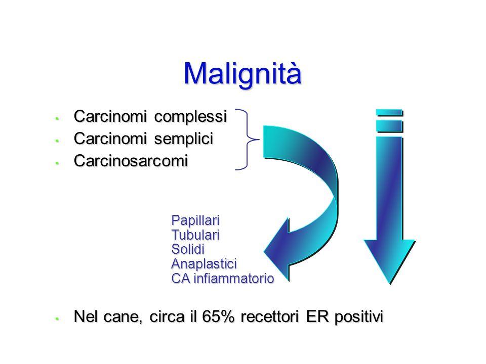 Malignità Carcinomi complessi Carcinomi complessi Carcinomi semplici Carcinomi semplici Carcinosarcomi Carcinosarcomi Nel cane, circa il 65% recettori