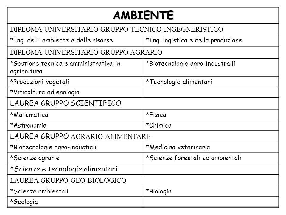 AMBIENTE DIPLOMA UNIVERSITARIO GRUPPO TECNICO-INGEGNERISTICO *Ing. dell' ambiente e delle risorse*Ing. logistica e della produzione DIPLOMA UNIVERSITA