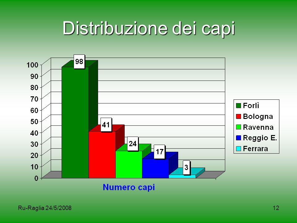 Ru-Raglia 24/5/200812 Distribuzione dei capi