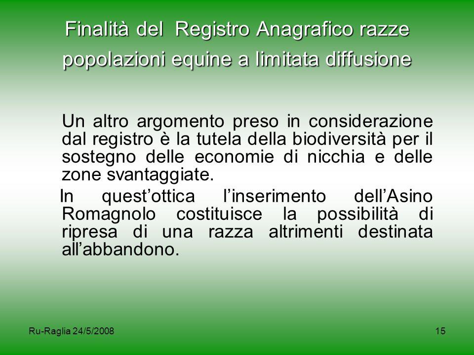 Ru-Raglia 24/5/200815 Finalità del Registro Anagrafico razze popolazioni equine a limitata diffusione Un altro argomento preso in considerazione dal r