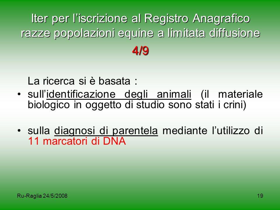 Ru-Raglia 24/5/200819 Iter per l'iscrizione al Registro Anagrafico razze popolazioni equine a limitata diffusione 4/9 La ricerca si è basata : sull'id