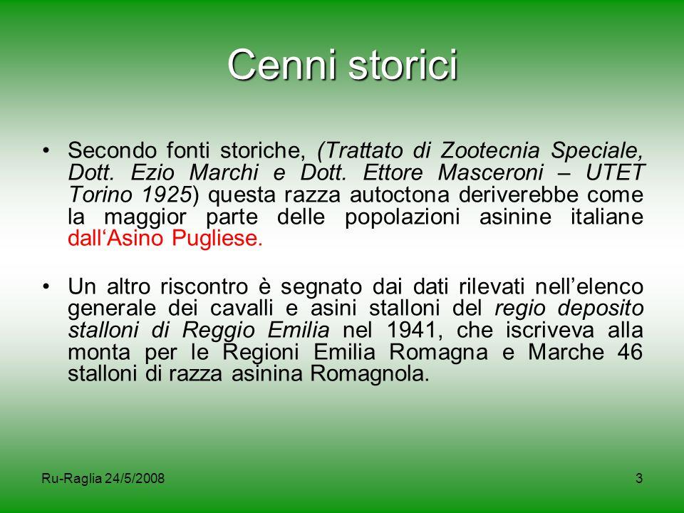 Ru-Raglia 24/5/20083 Cenni storici Secondo fonti storiche, (Trattato di Zootecnia Speciale, Dott. Ezio Marchi e Dott. Ettore Masceroni – UTET Torino 1