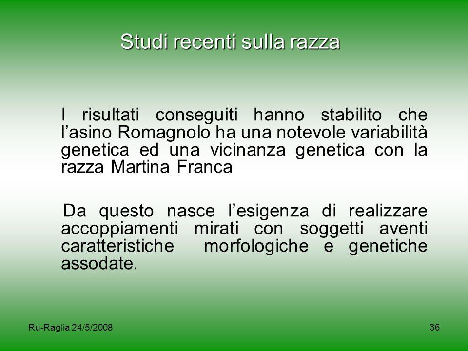 Ru-Raglia 24/5/200836 Studi recenti sulla razza I risultati conseguiti hanno stabilito che l'asino Romagnolo ha una notevole variabilità genetica ed u