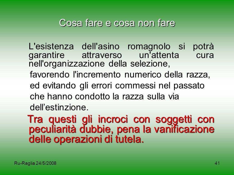 Ru-Raglia 24/5/200841 Cosa fare e cosa non fare L'esistenza dell'asino romagnolo si potrà garantire attraverso un'attenta cura nell'organizzazione del