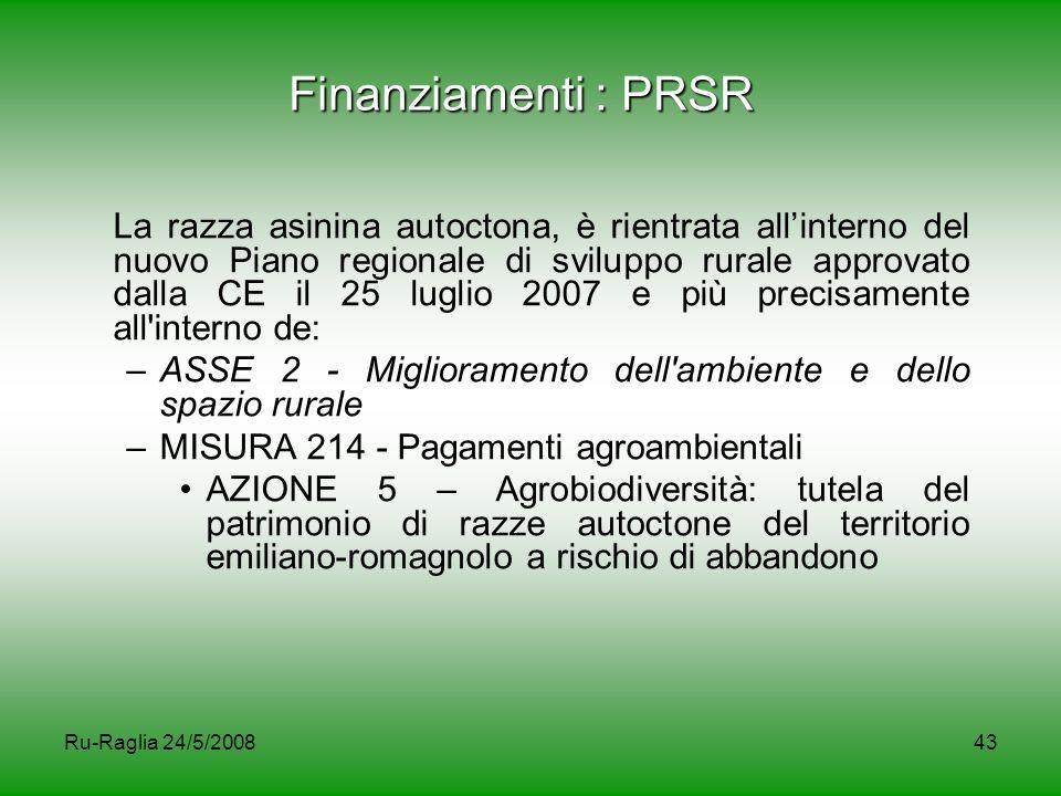 Ru-Raglia 24/5/200843 Finanziamenti : PRSR La razza asinina autoctona, è rientrata all'interno del nuovo Piano regionale di sviluppo rurale approvato