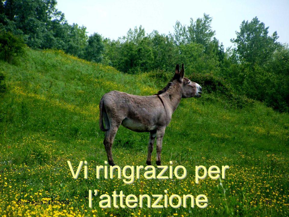 Ru-Raglia 24/5/200858 Vi ringrazio per l'attenzione