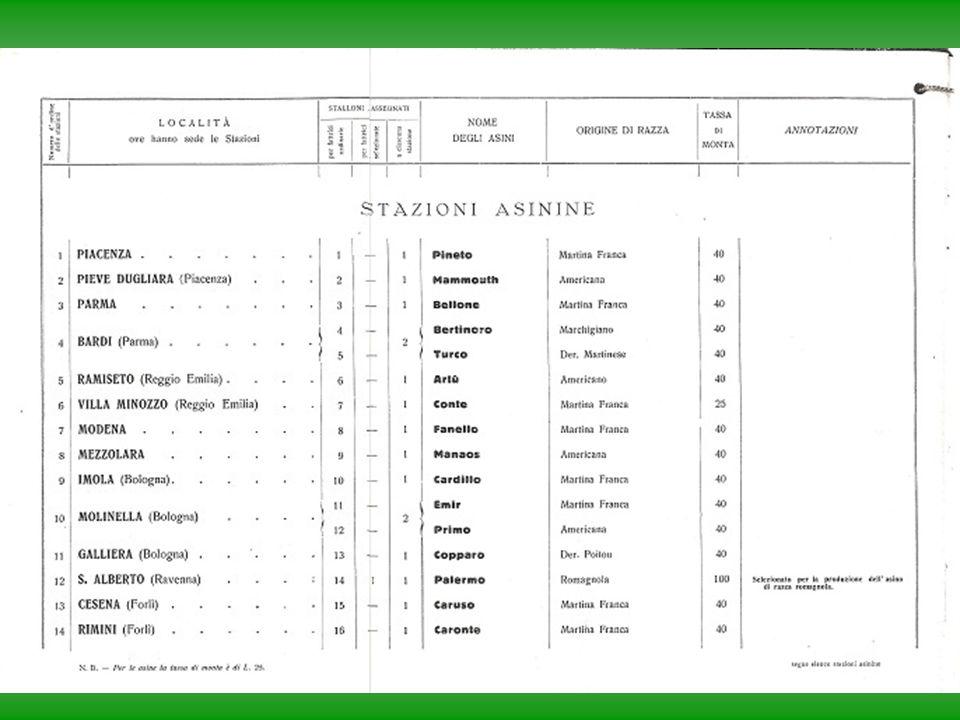 Ru-Raglia 24/5/200829 Affidabilità dell'Asino Romagnolo