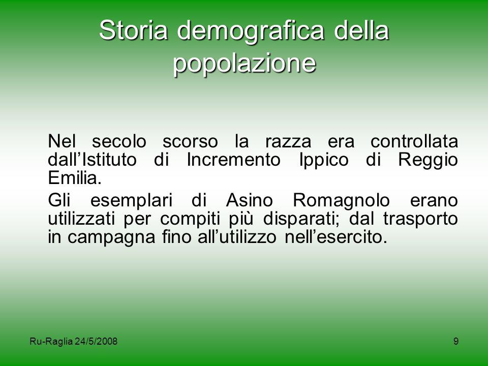 9 Storia demografica della popolazione Nel secolo scorso la razza era controllata dall'Istituto di Incremento Ippico di Reggio Emilia. Gli esemplari d