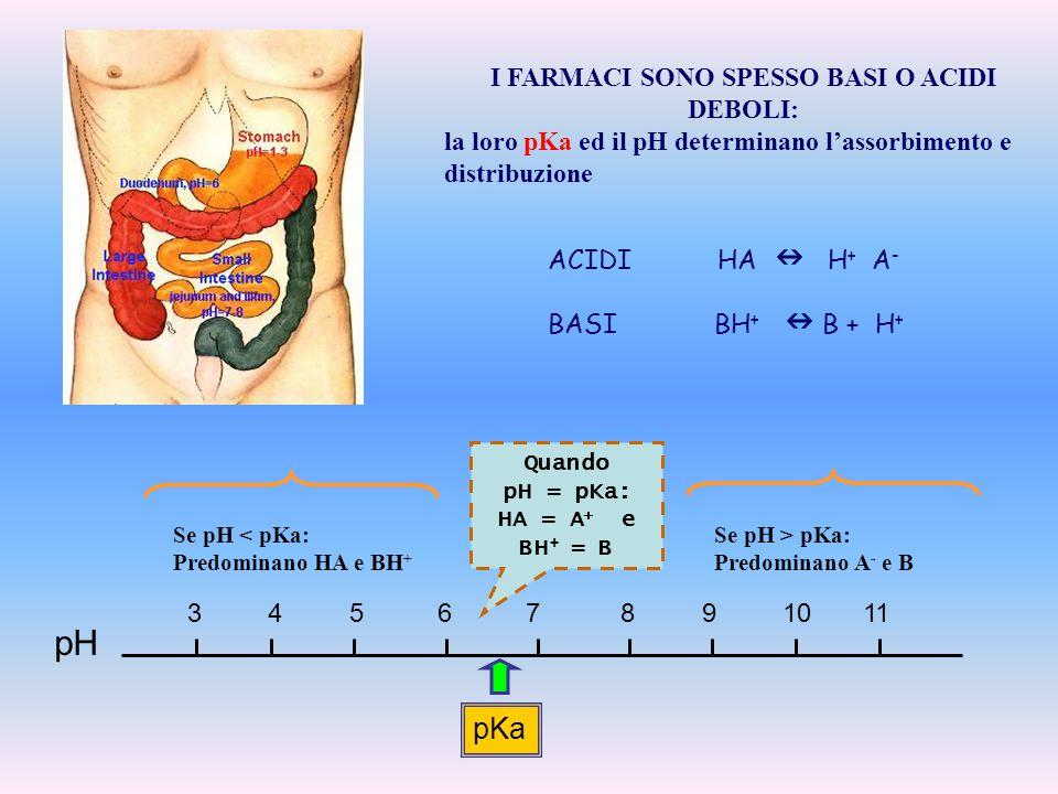 I FARMACI SONO SPESSO BASI O ACIDI DEBOLI: la loro pKa ed il pH determinano l'assorbimento e distribuzione ACIDI HA H + A - BASI BH + B + H + pKa Quan