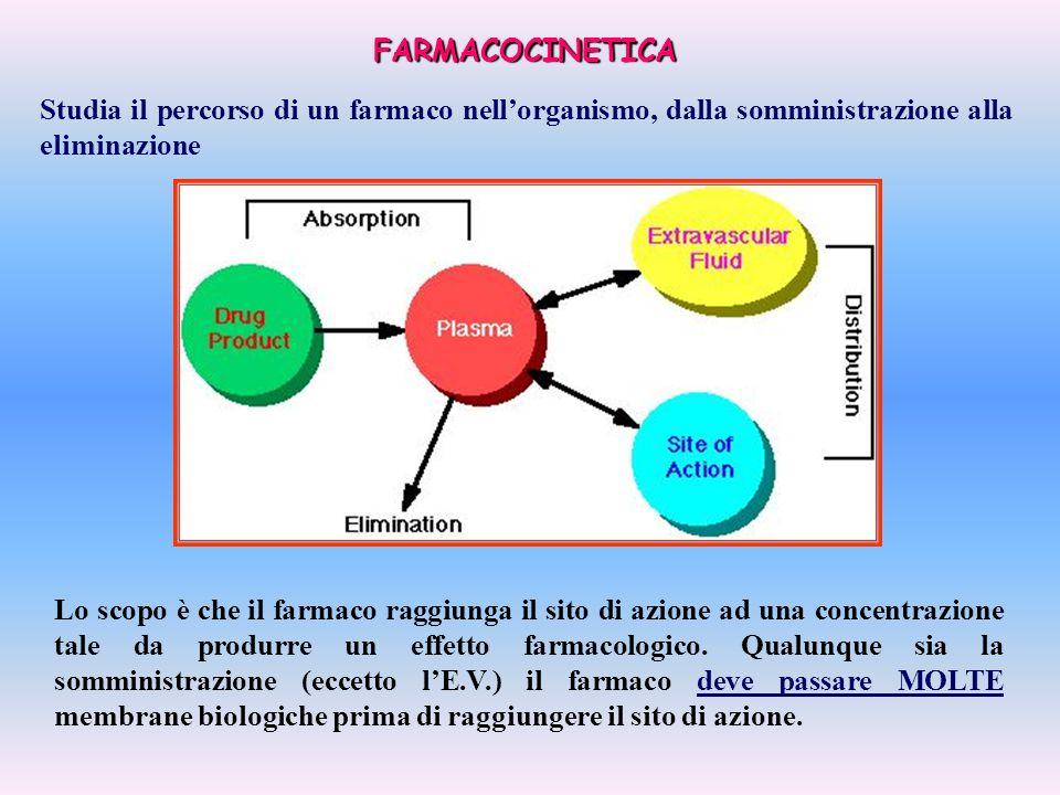 FARMACOCINETICA Lo scopo è che il farmaco raggiunga il sito di azione ad una concentrazione tale da produrre un effetto farmacologico. Qualunque sia l