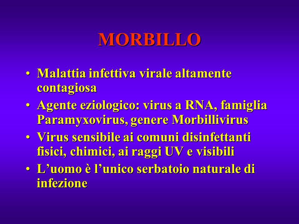 MORBILLO Malattia infettiva virale altamente contagiosaMalattia infettiva virale altamente contagiosa Agente eziologico: virus a RNA, famiglia Paramyx