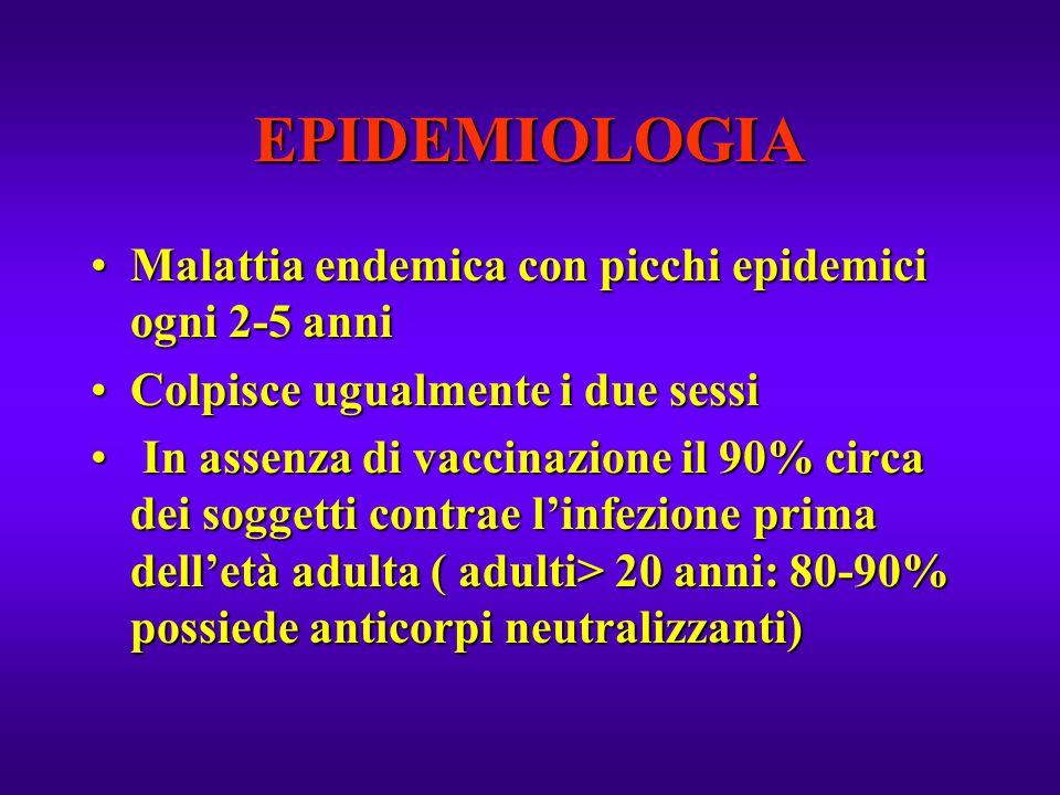 EPIDEMIOLOGIA Malattia endemica con picchi epidemici ogni 2-5 anniMalattia endemica con picchi epidemici ogni 2-5 anni Colpisce ugualmente i due sessi