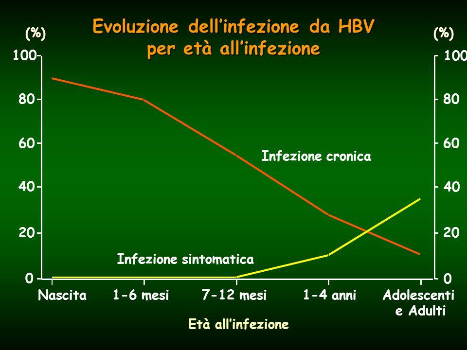Epatite B: attuale situazione epidemiologica in Italia circa 500.000 portatori di HBsAg circa 500.000 portatori di HBsAg Le infezioni da HBV si verificano ancora in soggetti non vaccinati a causa di: Le infezioni da HBV si verificano ancora in soggetti non vaccinati a causa di: uso di droghe per via endovenosa uso di droghe per via endovenosa trasmissione sessuale trasmissione sessuale nosocomiale nosocomiale trasfusione (rischio estremamente basso) trasfusione (rischio estremamente basso)