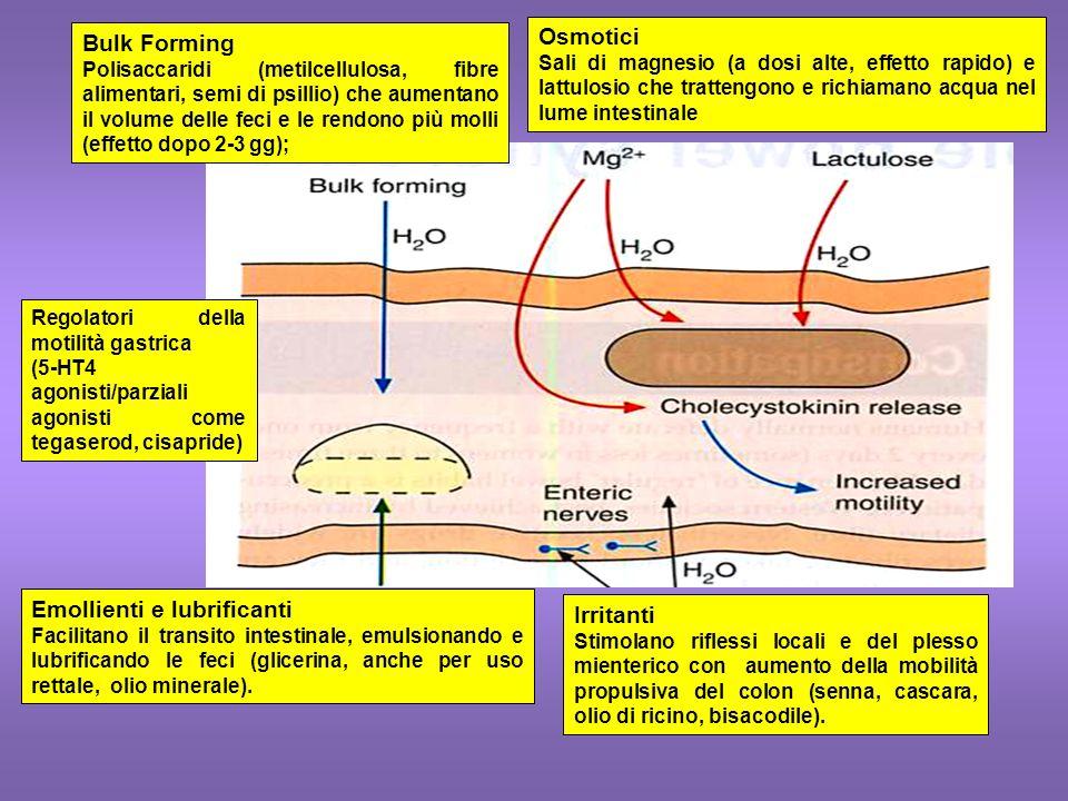Bulk Forming Polisaccaridi (metilcellulosa, fibre alimentari, semi di psillio) che aumentano il volume delle feci e le rendono più molli (effetto dopo 2-3 gg); Osmotici Sali di magnesio (a dosi alte, effetto rapido) e lattulosio che trattengono e richiamano acqua nel lume intestinale Irritanti Stimolano riflessi locali e del plesso mienterico con aumento della mobilità propulsiva del colon (senna, cascara, olio di ricino, bisacodile).