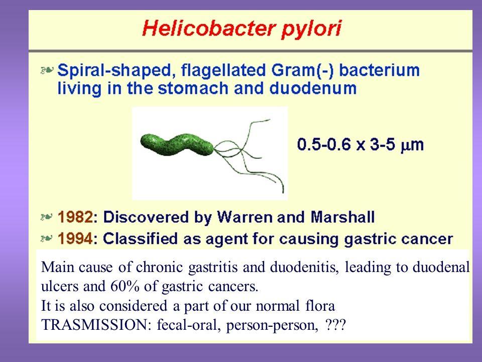Helicobacter pylori  Documentare la presenza del batterio tramite biopsia  Eradicazione del batterio tramite trattamento con antibiotico 1.Bismuto + metronidazolo + tetraciclina 2.Metronidazolo + amoxicillina o claritromicina + antisecretivo ERADICAZIONE FINO AL 90%