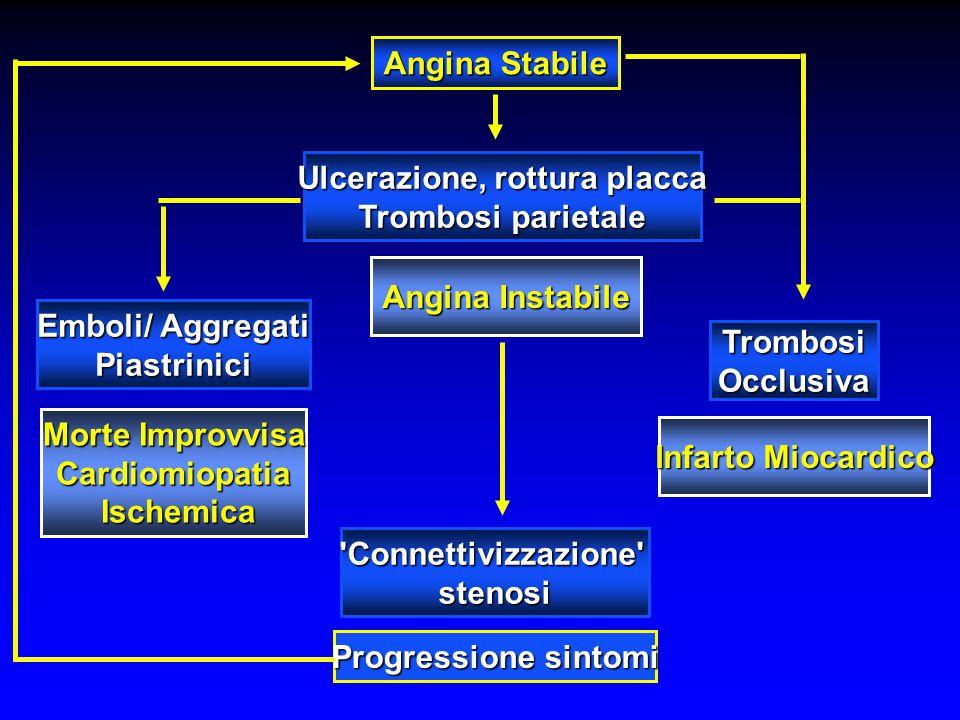 Angina Stabile 'Connettivizzazione'stenosi Morte Improvvisa Cardiomiopatia Ischemica Ischemica Infarto Miocardico Angina Instabile Ulcerazione, rottur