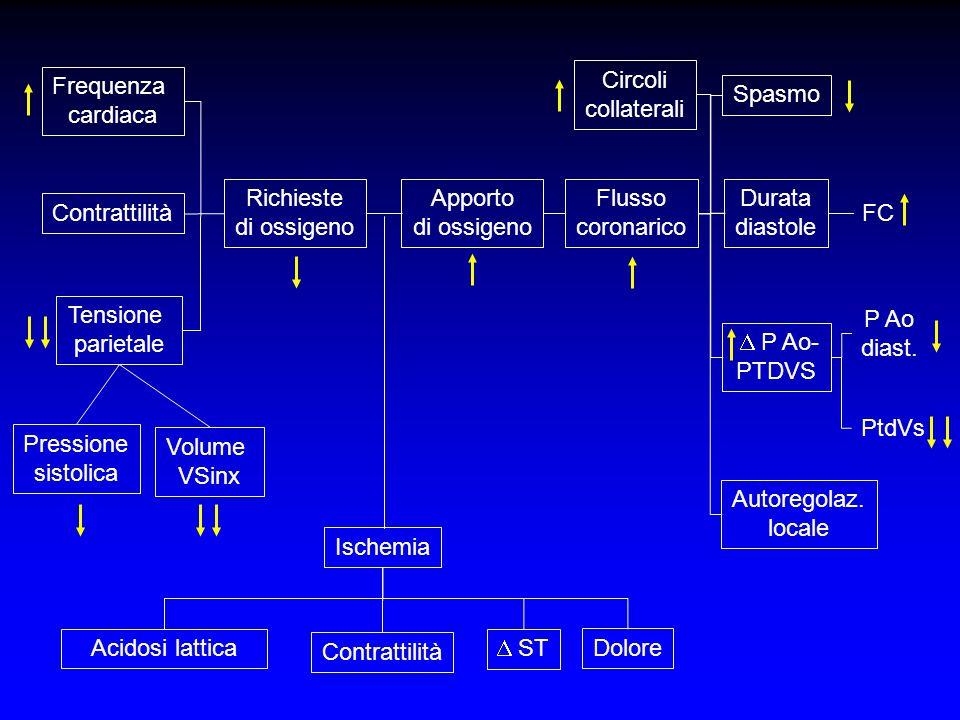 Frequenza cardiaca Contrattilità Tensione parietale Pressione sistolica Volume VSinx Richieste di ossigeno Apporto di ossigeno Flusso coronarico Circo