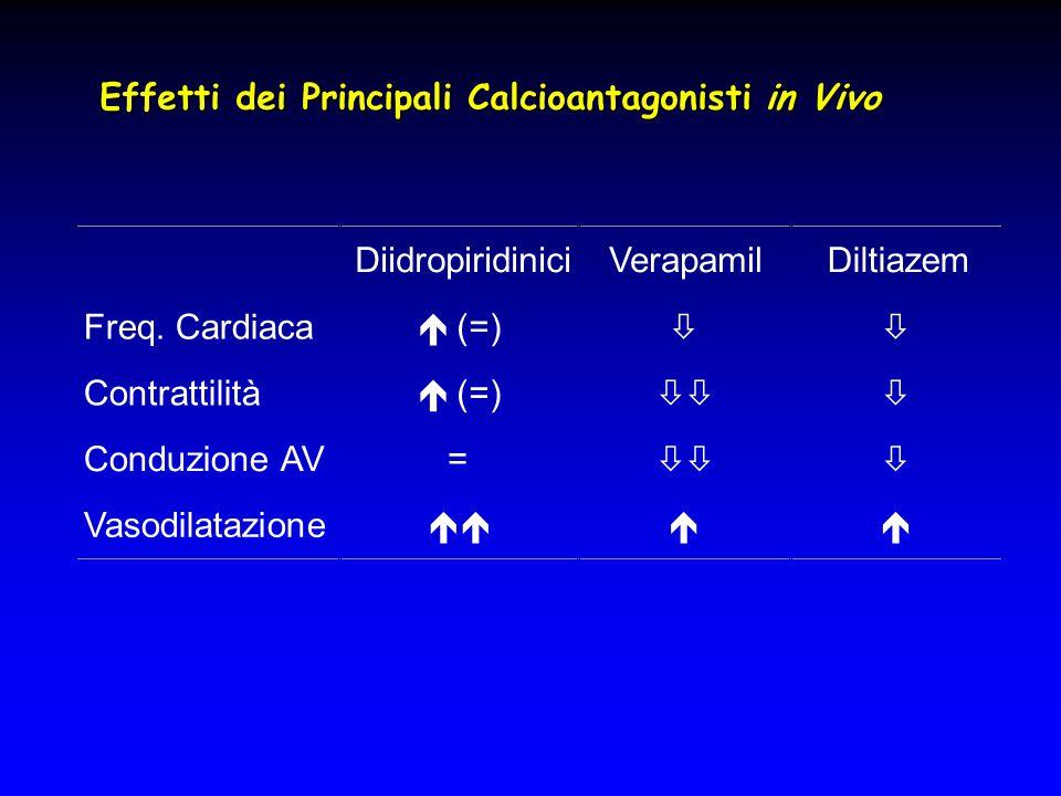 Effetti dei Principali Calcioantagonisti in Vivo DiidropiridiniciVerapamilDiltiazem Freq. Cardiaca  (=)  Contrattilità  (=)  Conduzione AV= 