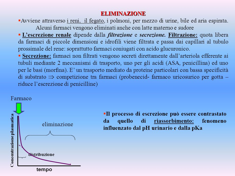 ELIMINAZIONE RENALE 1.Filtrazione glomerulare.